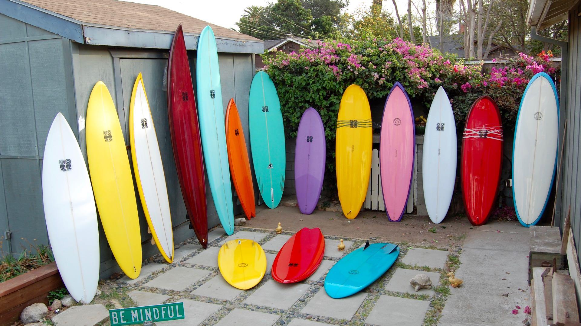 backyard lineup